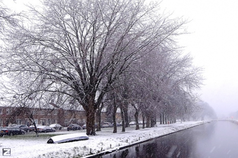 Winter in Hasselt