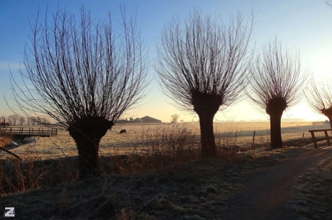 Winters landschap Om de Weede